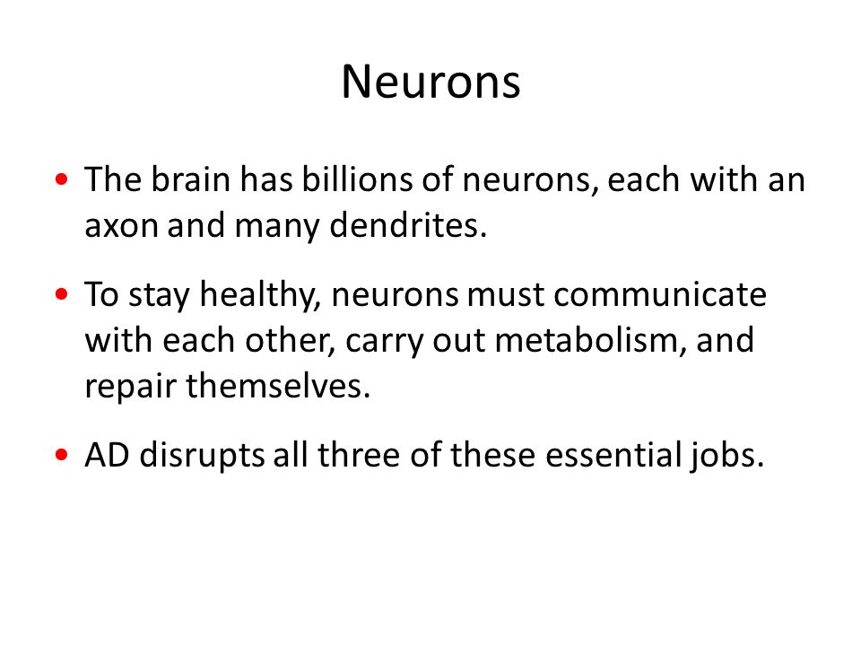 Neurons The brain has billions of neurons, each with an axon and many dendrites.