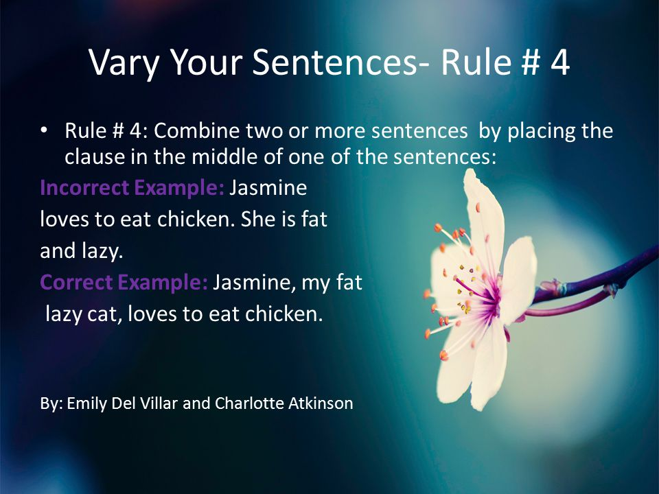 Vary Your Sentences- Rule # 4