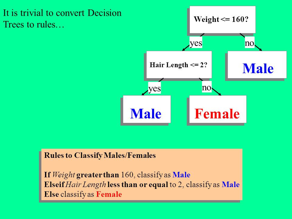 Male Male Female It is trivial to convert Decision Trees to rules… yes