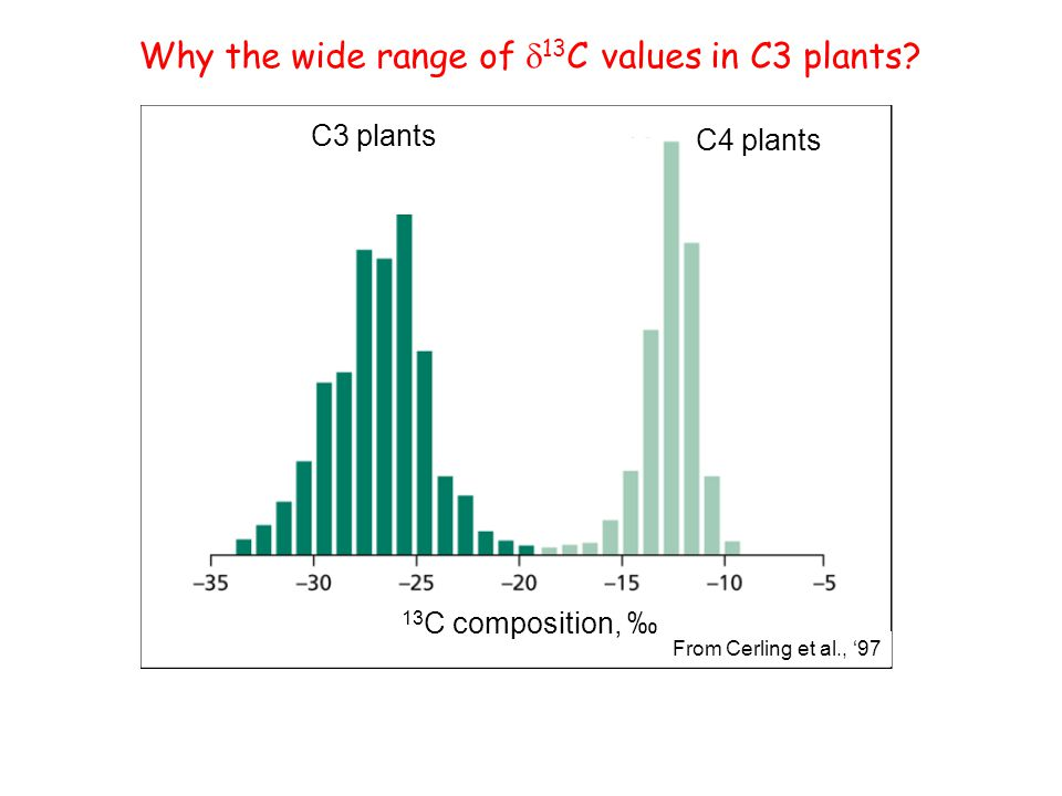 Why the wide range of d13C values in C3 plants