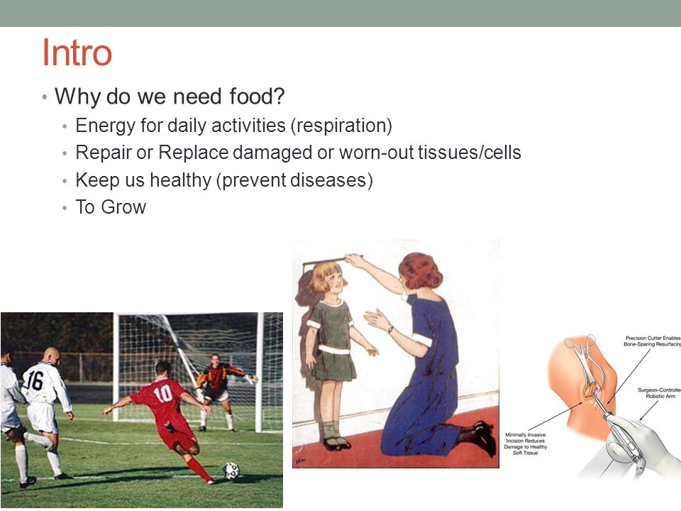 Intro Why do we need food Energy for daily activities (respiration)