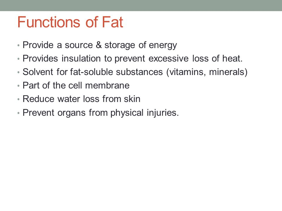 Functions of Fat Provide a source & storage of energy