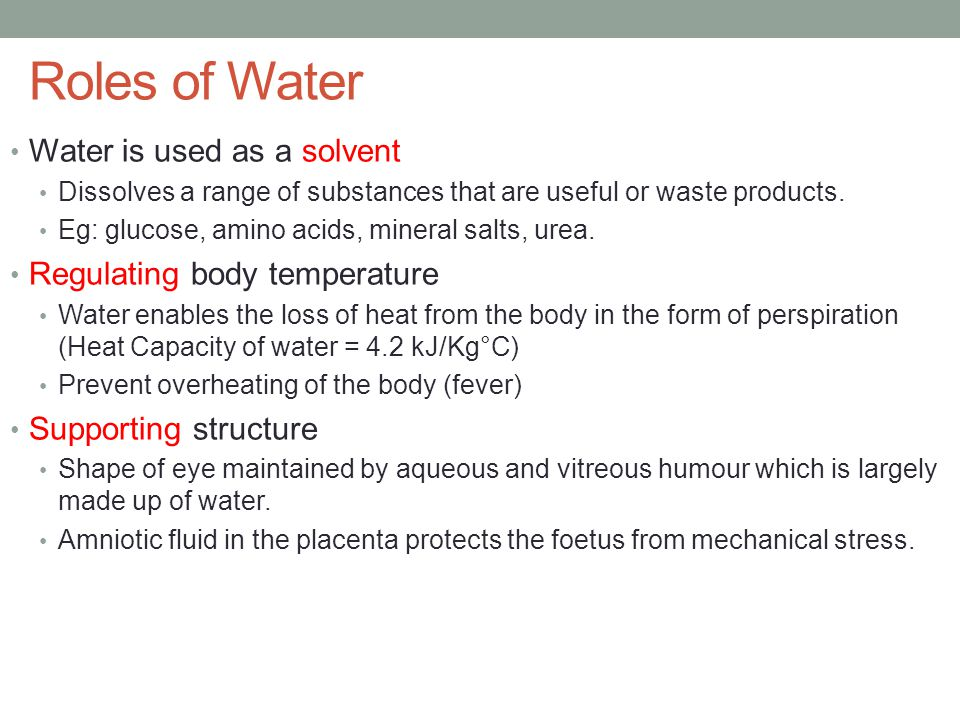 Roles of Water Water is used as a solvent Regulating body temperature