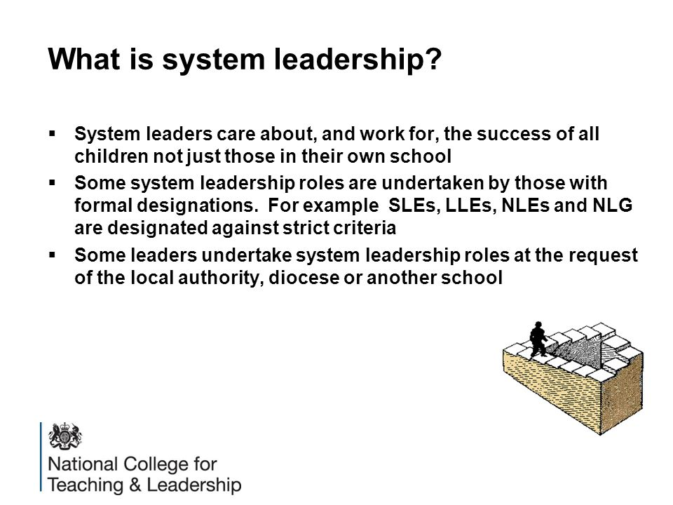 What is system leadership