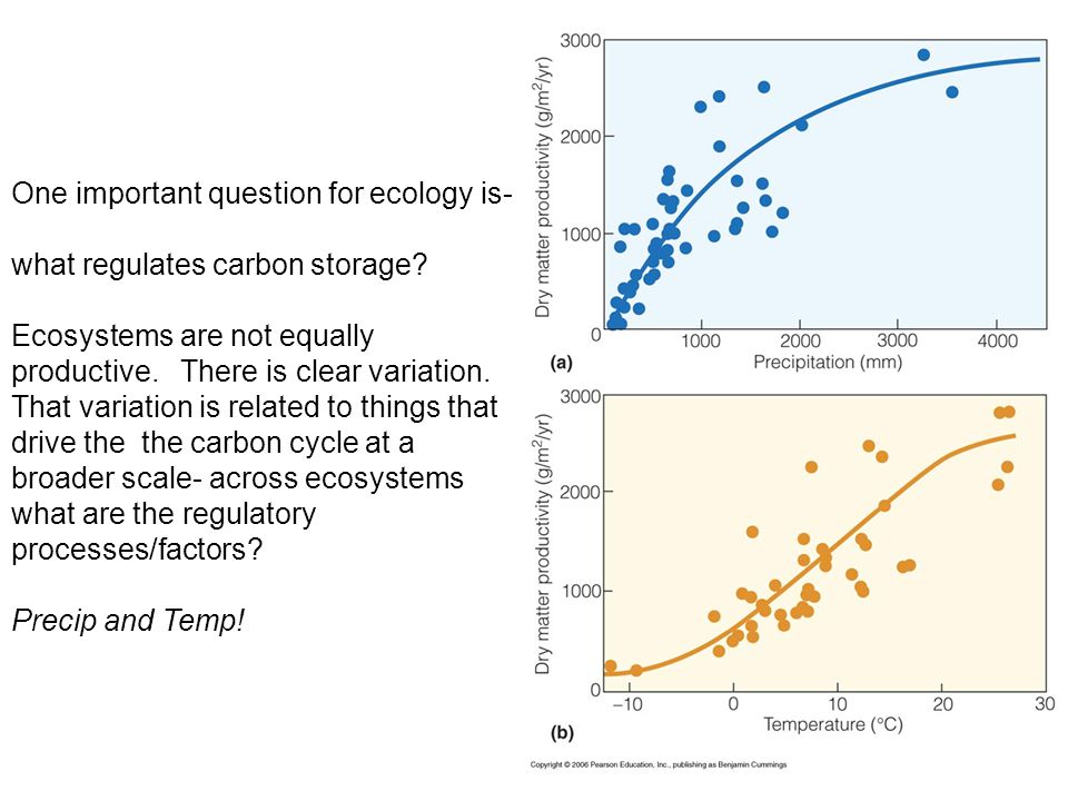 One important question for ecology is- what regulates carbon storage