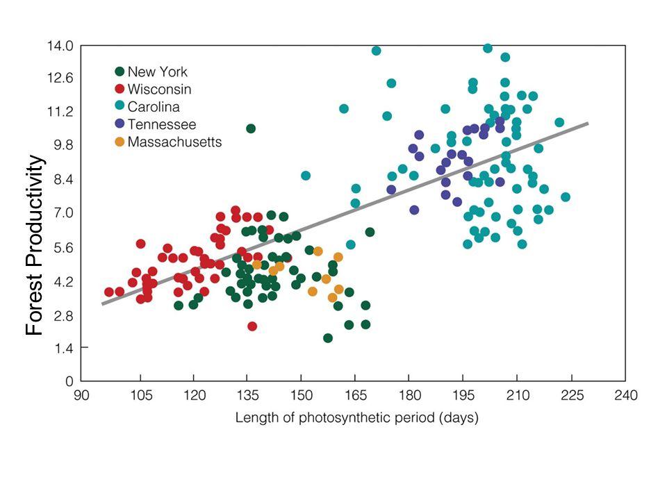 Forest Productivity Figure 20.3