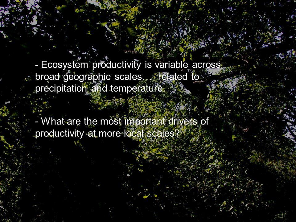 - Ecosystem productivity is variable across broad geographic scales… related to precipitation and temperature.