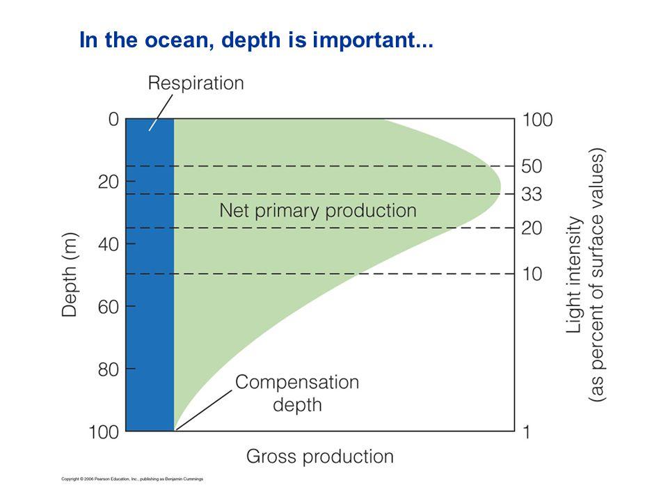 In the ocean, depth is important...