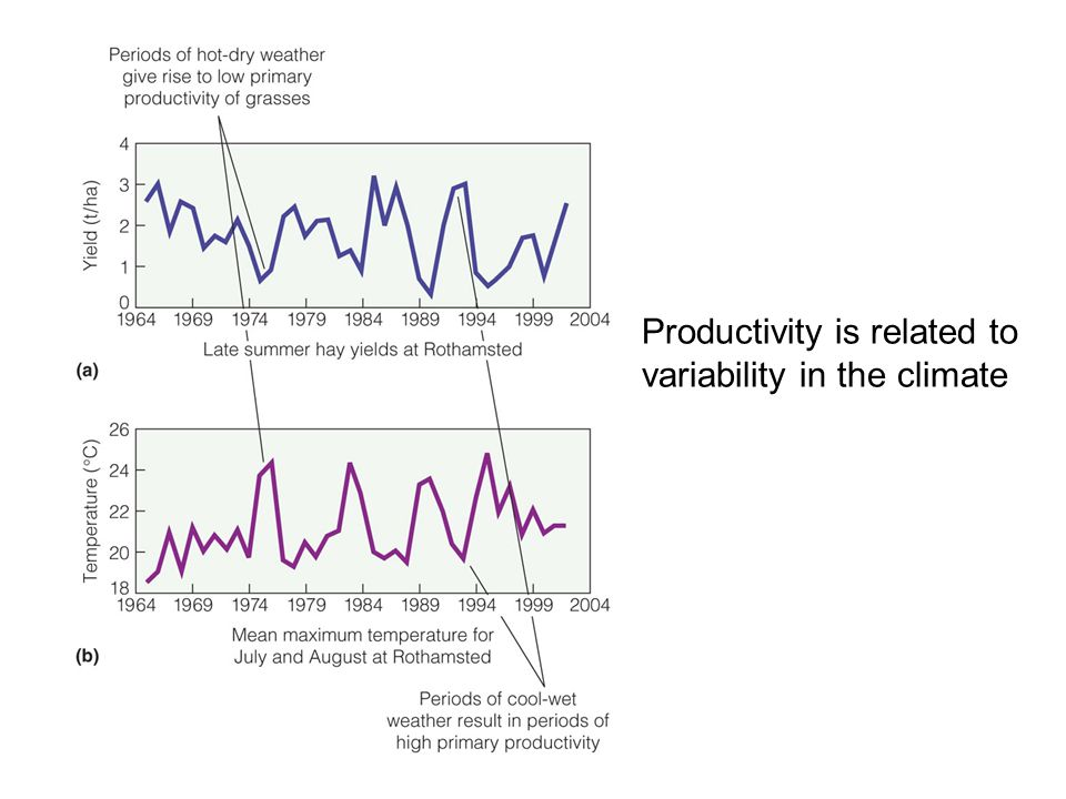 Productivity is related to variability in the climate