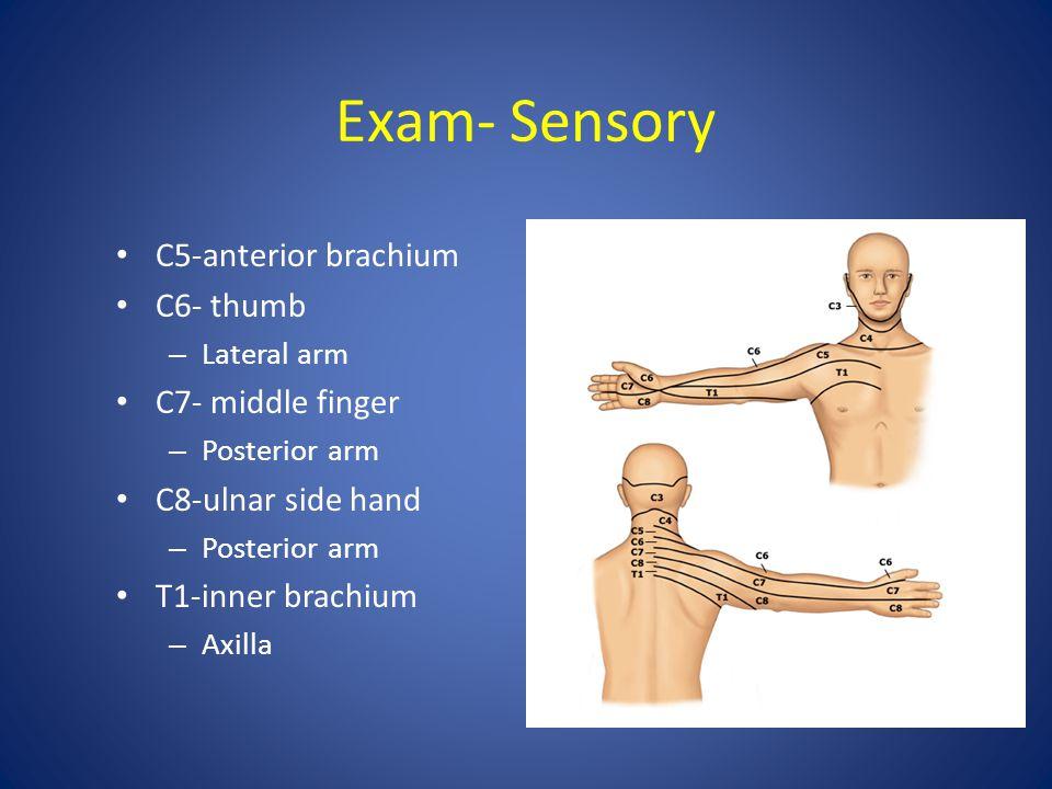 Exam- Sensory C5-anterior brachium C6- thumb C7- middle finger