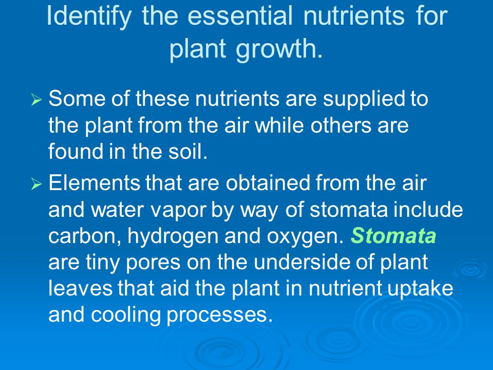 Identify the essential nutrients for plant growth.