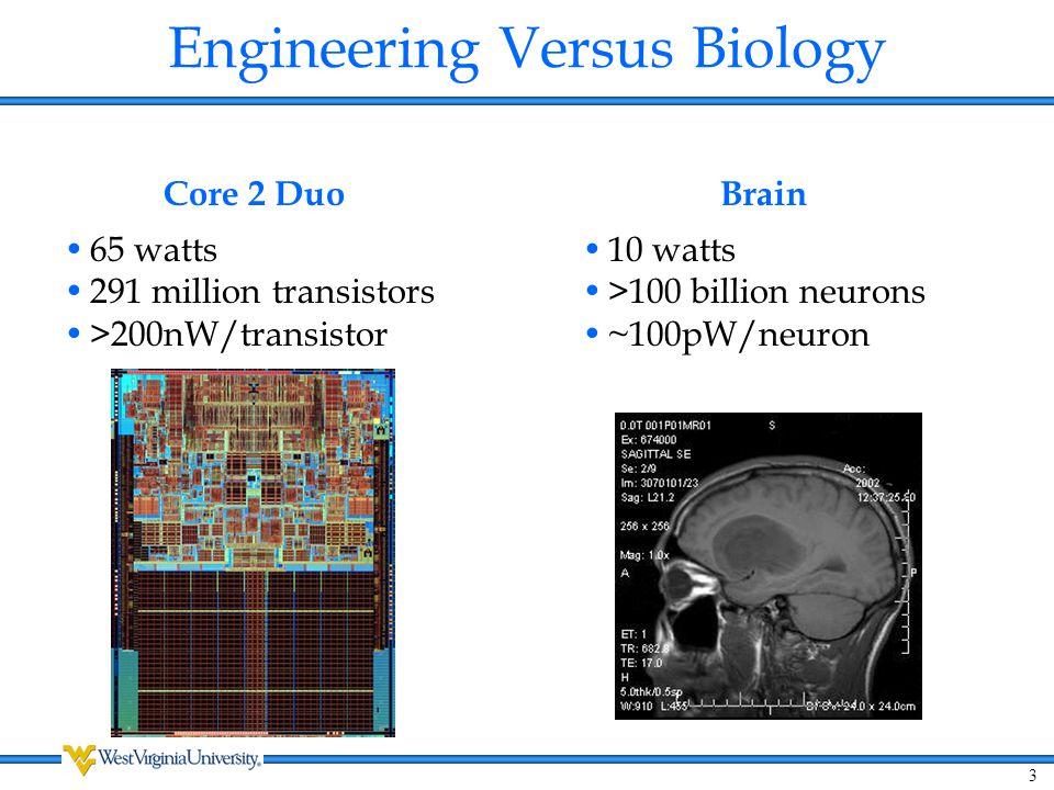 Engineering Versus Biology