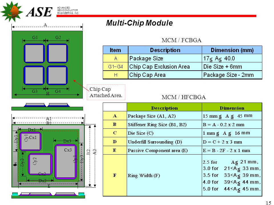 Multi-Chip Module MCM / FCBGA MCM / HFCBGA Chip Cap Attached Area. G1