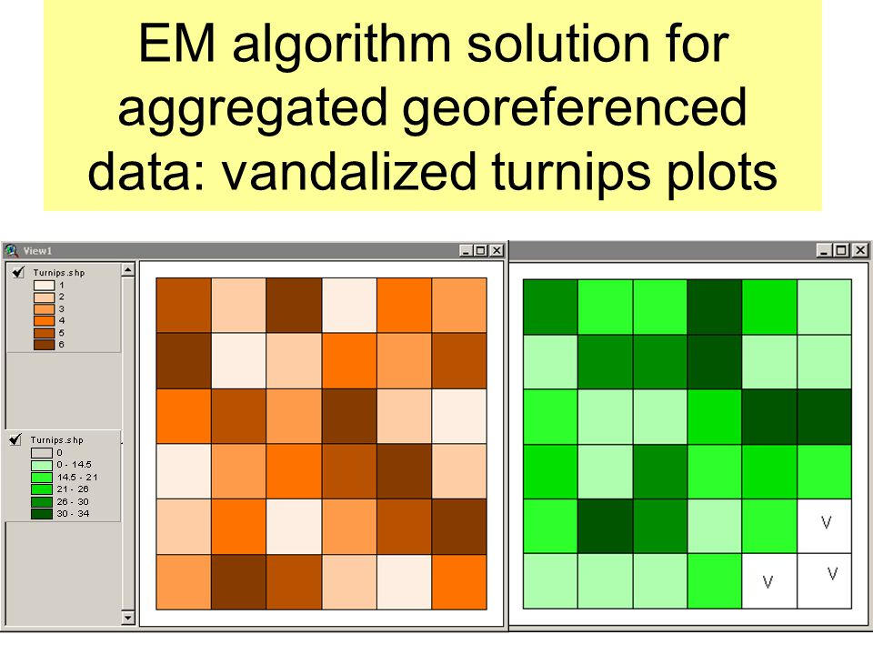 EM algorithm solution for aggregated georeferenced data: vandalized turnips plots
