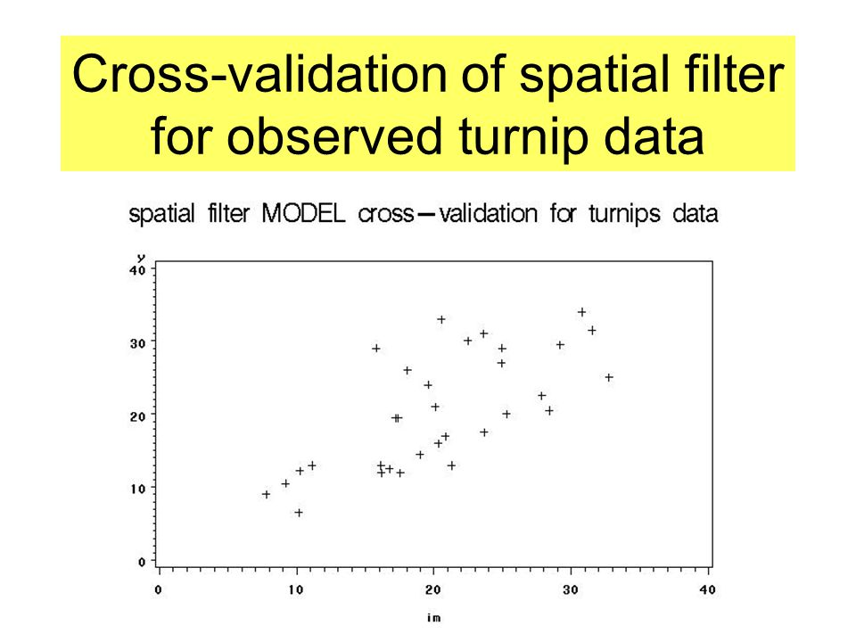 Cross-validation of spatial filter for observed turnip data