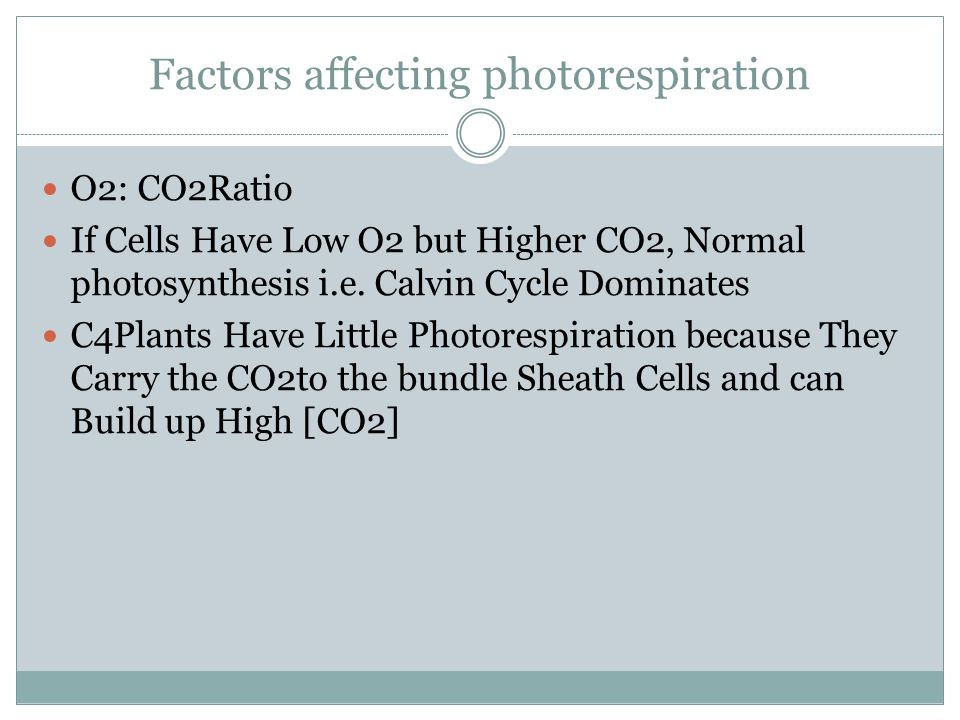 Factors affecting photorespiration