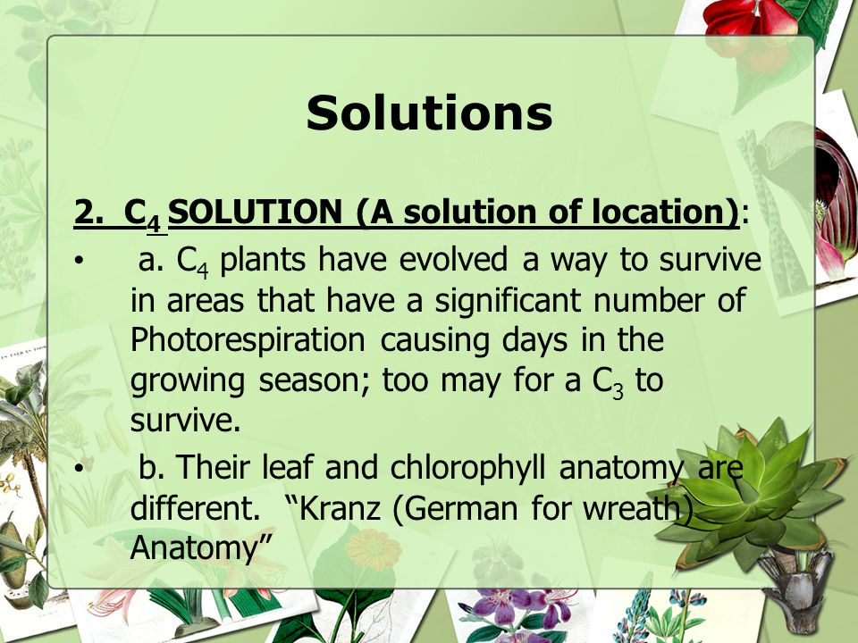 Solutions 2. C4 SOLUTION (A solution of location):