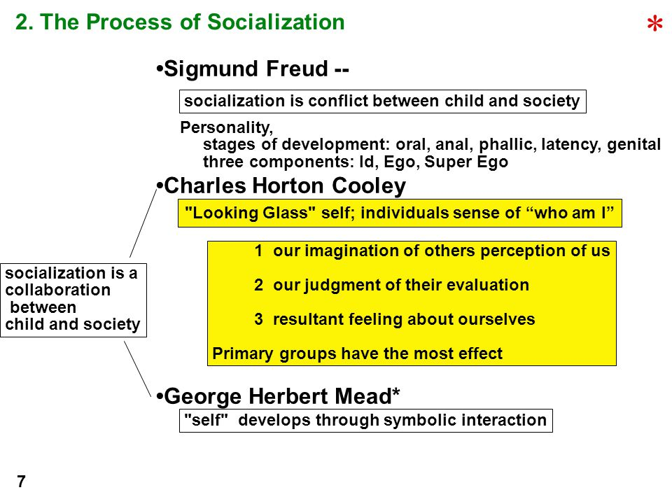 2. The Process of Socialization