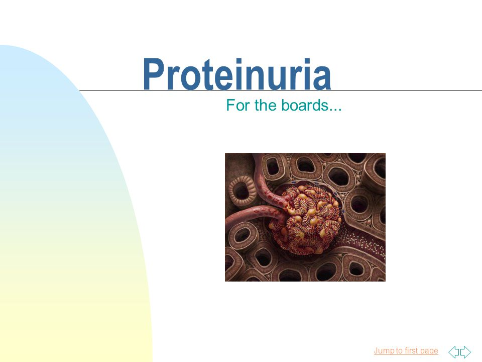 4/11/2017 Proteinuria For the boards...