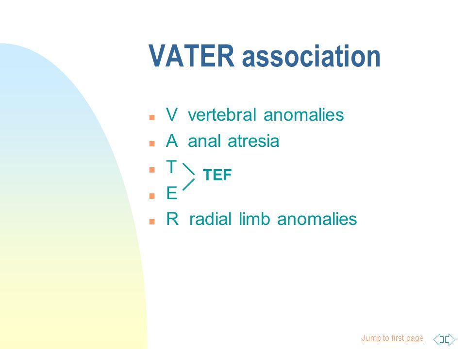 VATER association V vertebral anomalies A anal atresia T E