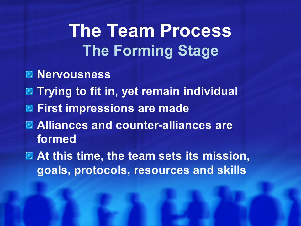 The Team Process The Forming Stage