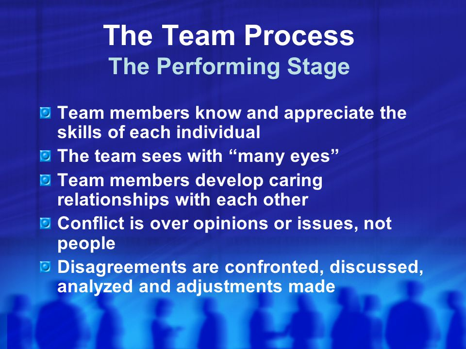 The Team Process The Performing Stage