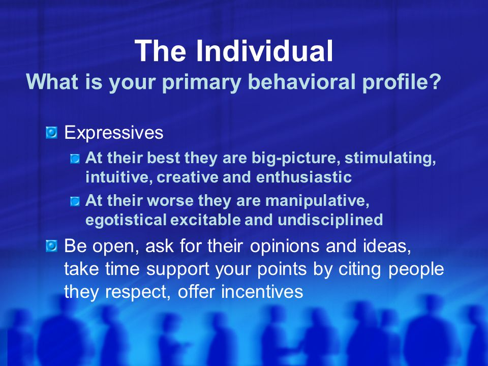 The Individual What is your primary behavioral profile