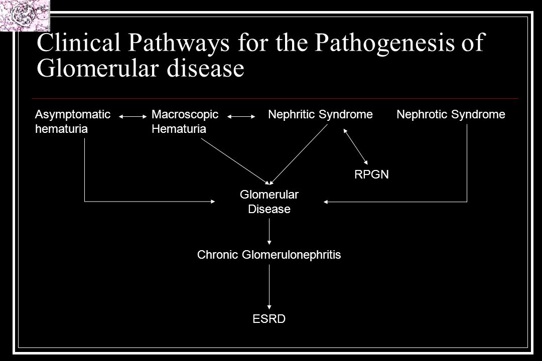 Clinical Pathways for the Pathogenesis of Glomerular disease