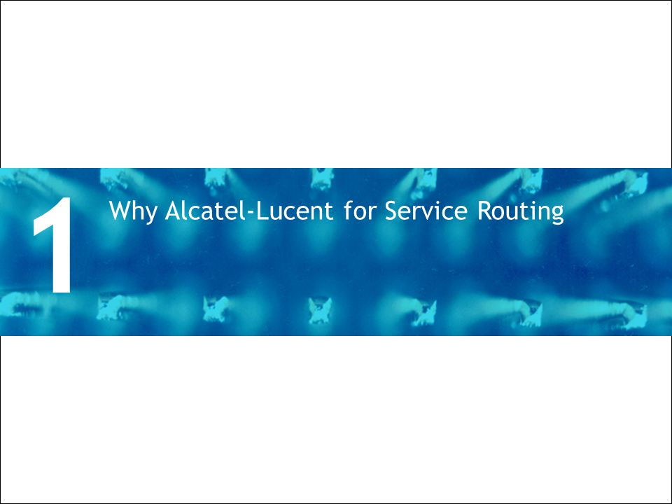 1 Why Alcatel-Lucent for Service Routing Divider Section Break Pages
