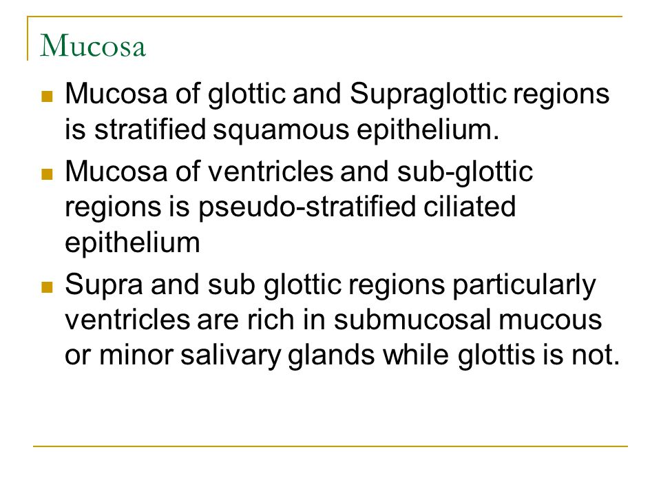 Mucosa Mucosa of glottic and Supraglottic regions is stratified squamous epithelium.