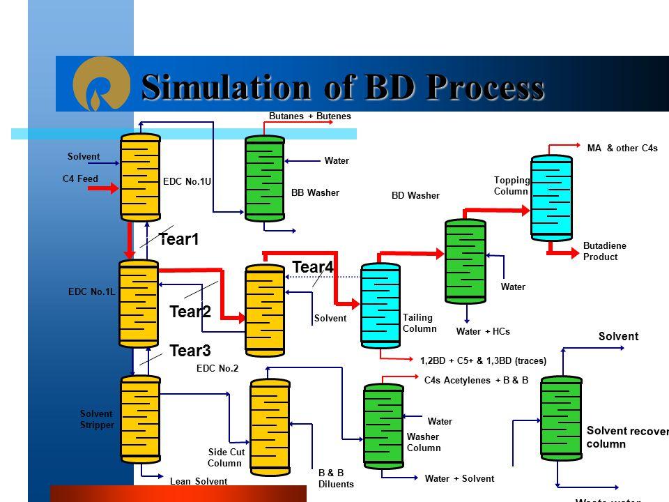 Simulation of BD Process