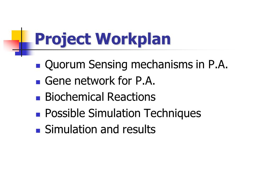 Project Workplan Quorum Sensing mechanisms in P.A.