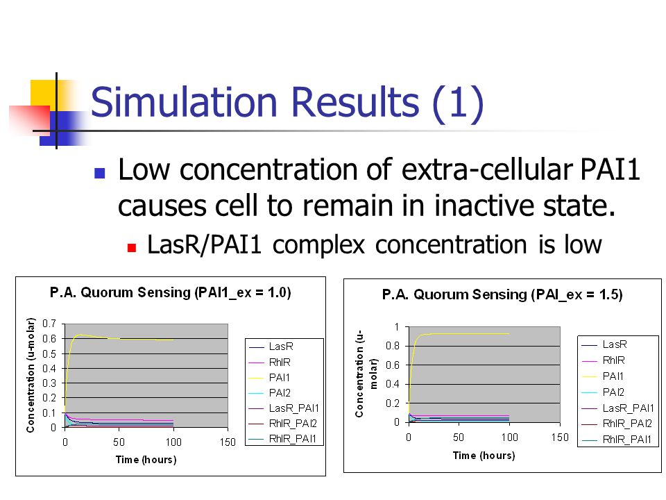 Simulation Results (1) Low concentration of extra-cellular PAI1 causes cell to remain in inactive state.