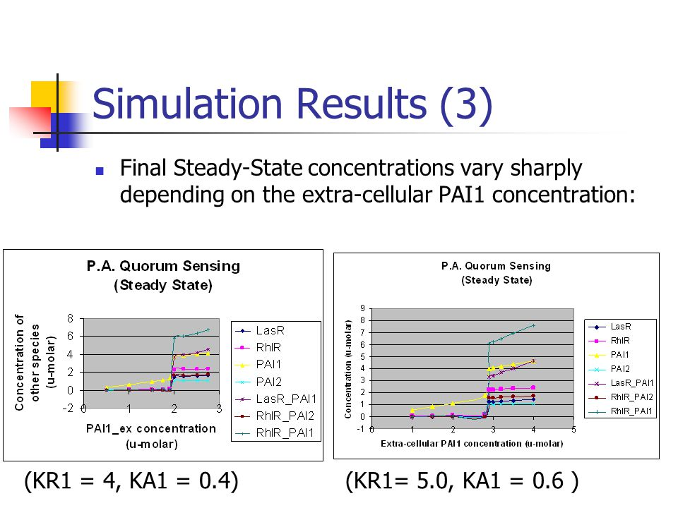 Simulation Results (3) Final Steady-State concentrations vary sharply depending on the extra-cellular PAI1 concentration: