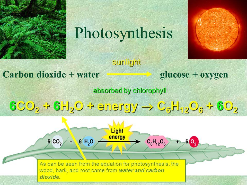 Photosynthesis 6CO2 + 6H2O + energy  C6H12O6 + 6O2