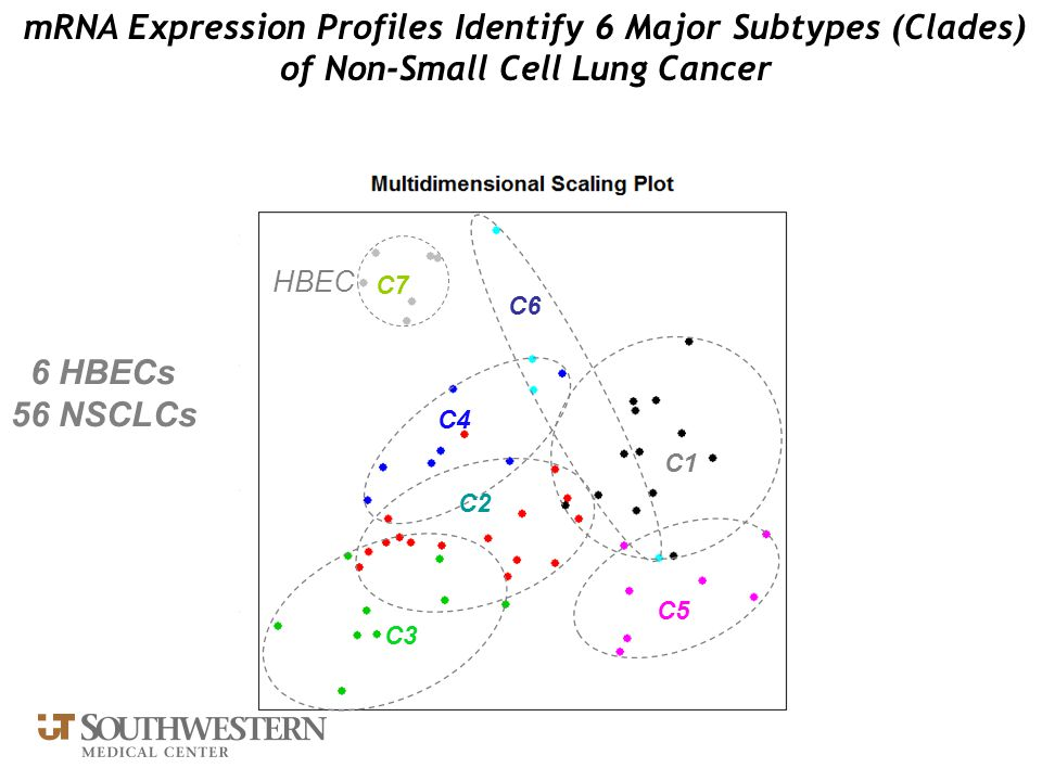 mRNA Expression Profiles Identify 6 Major Subtypes (Clades) of Non-Small Cell Lung Cancer