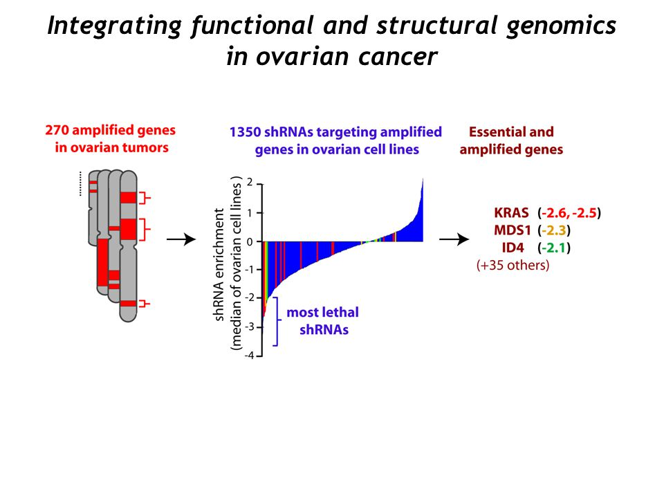 Integrating functional and structural genomics