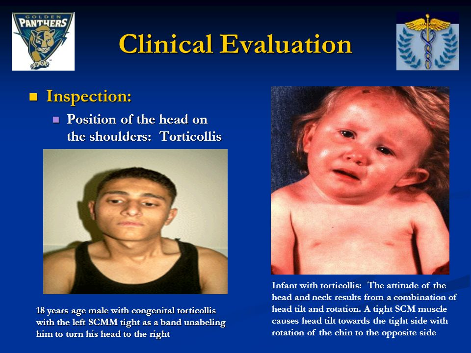 Clinical Evaluation Inspection: