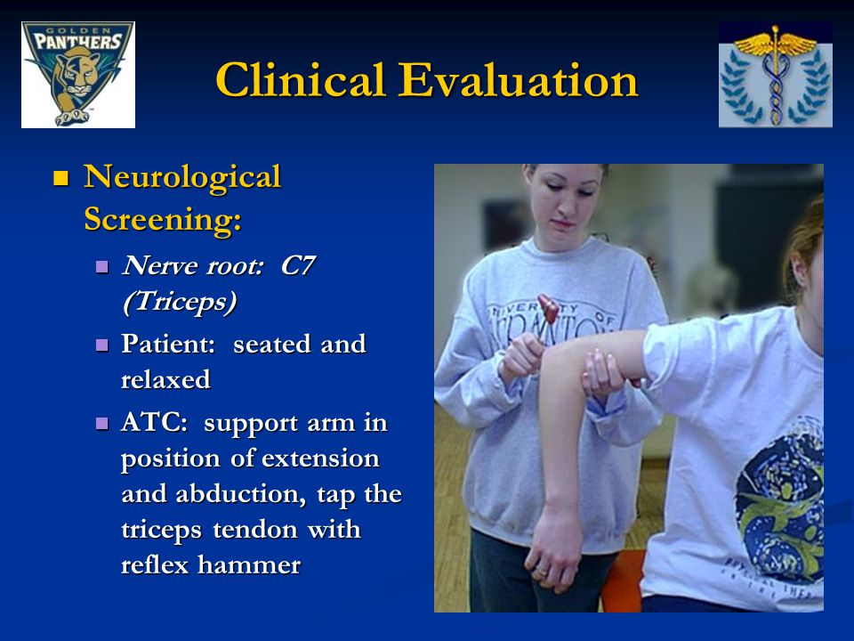Clinical Evaluation Neurological Screening: Nerve root: C7 (Triceps)