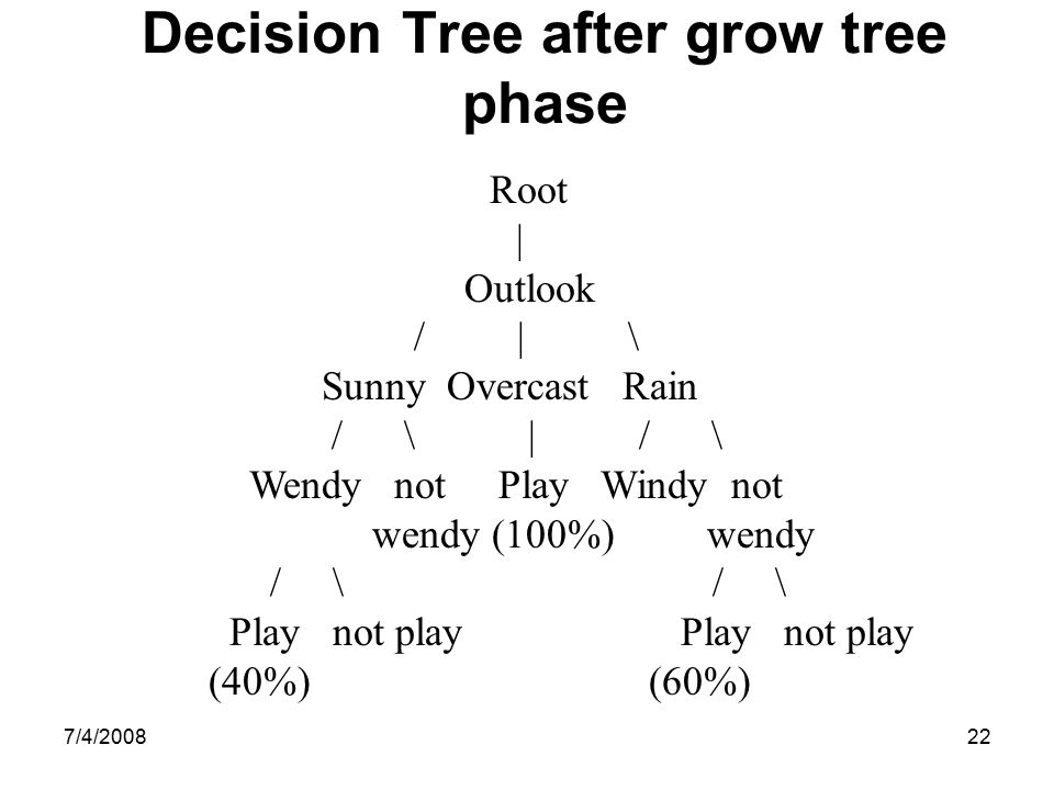 Decision Tree after grow tree phase