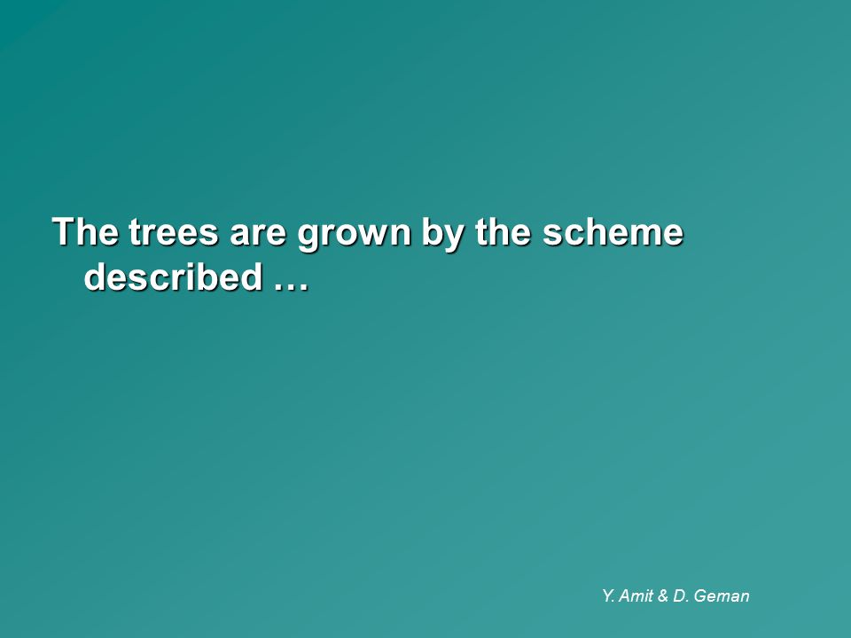 The trees are grown by the scheme described …