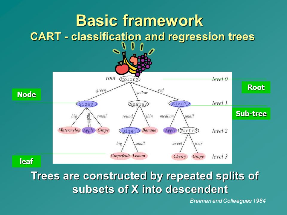 Basic framework CART - classification and regression trees