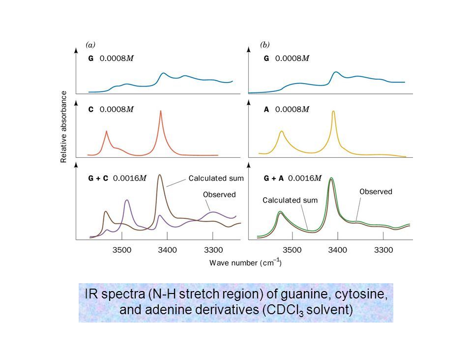 IR spectra (N-H stretch region) of guanine, cytosine, and adenine derivatives (CDCl3 solvent)