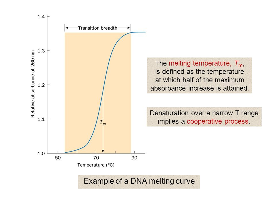 Example of a DNA melting curve