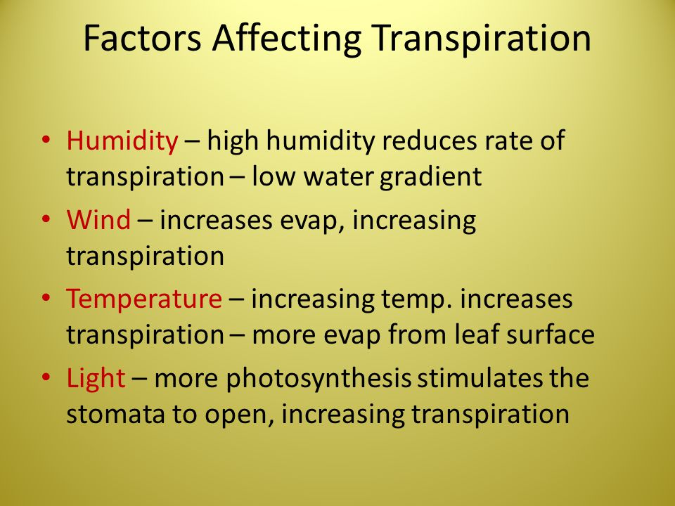 Factors Affecting Transpiration