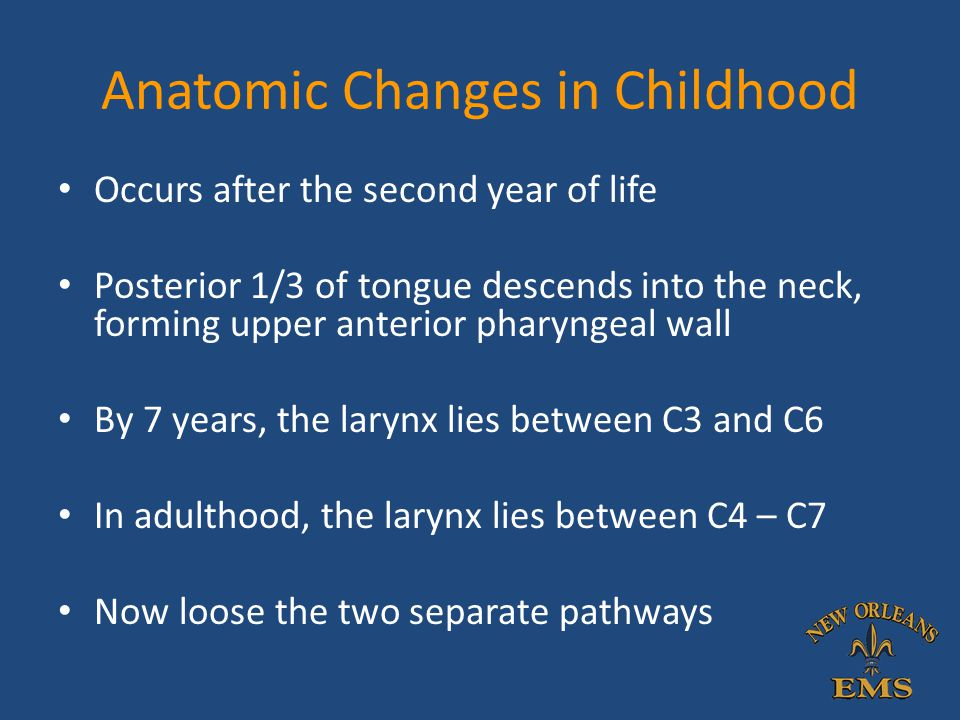 Anatomic Changes in Childhood