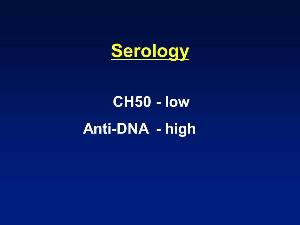 Serology CH50 - low Anti-DNA - high