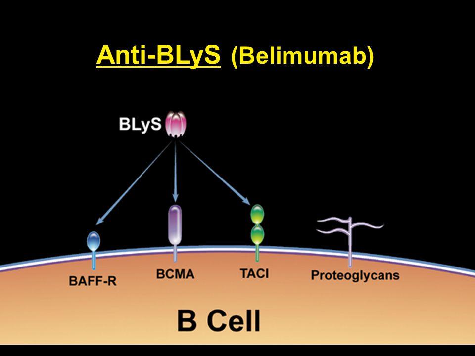 Anti-BLyS (Belimumab)