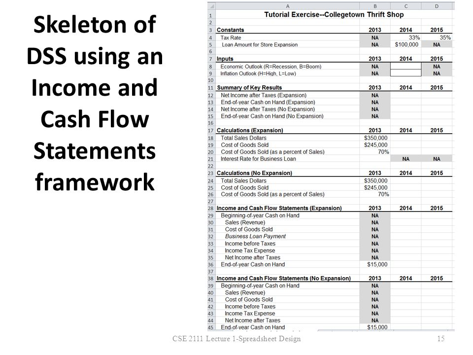 Skeleton of DSS using an Income and Cash Flow Statements framework