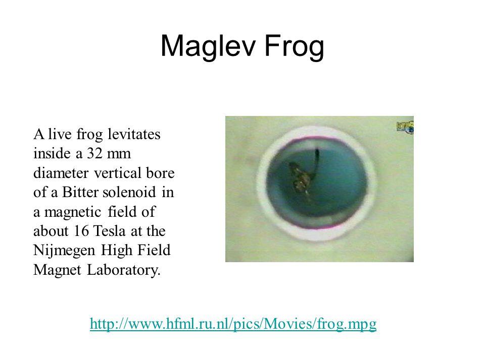 Maglev Frog